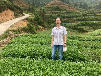 林月珠(天一生水茶叶)